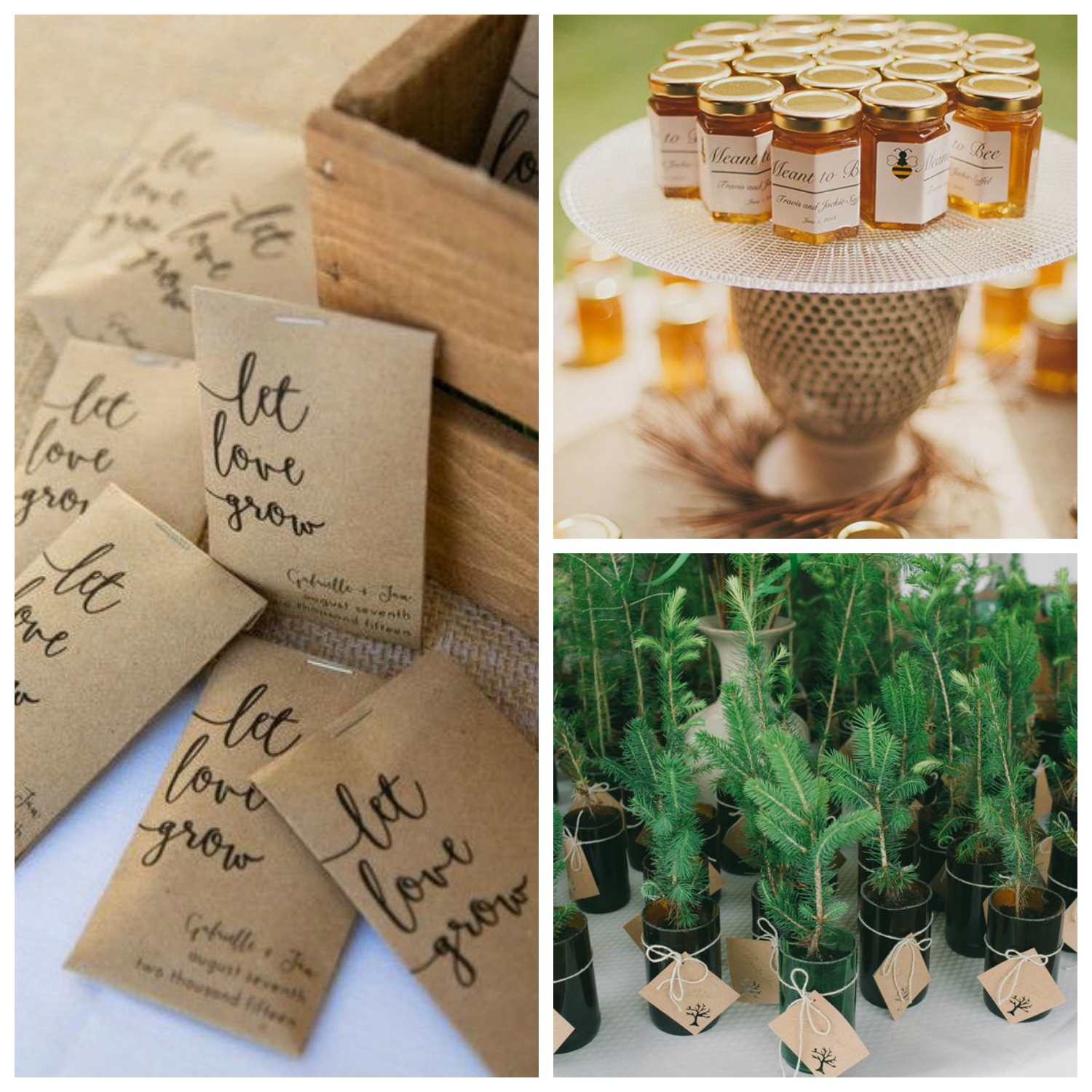 eco friendly wedding favours